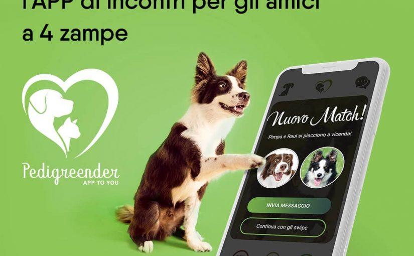 """""""Pedigreender"""": arriva la prima app di incontri per cani e gatti"""